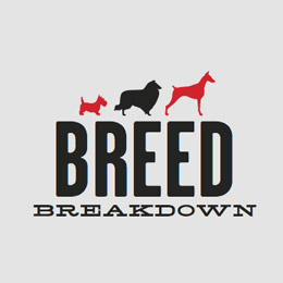 Breed Breakdown