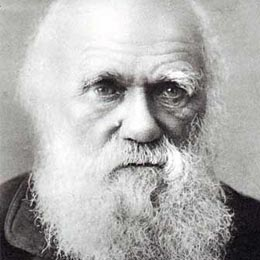 Darwin theory papers available online