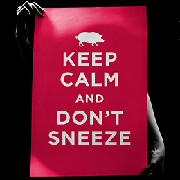 Keep Calm and Don't Sneeze