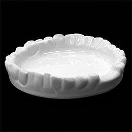 Denture ashtray